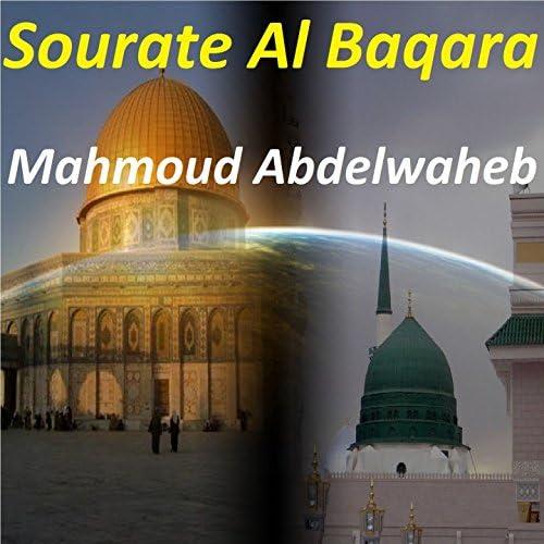 Mahmoud Abdelwaheb