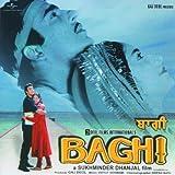 Baghi - Hathaan Diyan Chaar Lakeeraan Ton (Baghi / Soundtrack Version)