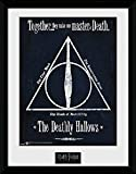 Harry Potter Deathly Hallows Gerahmtes Bild Standard