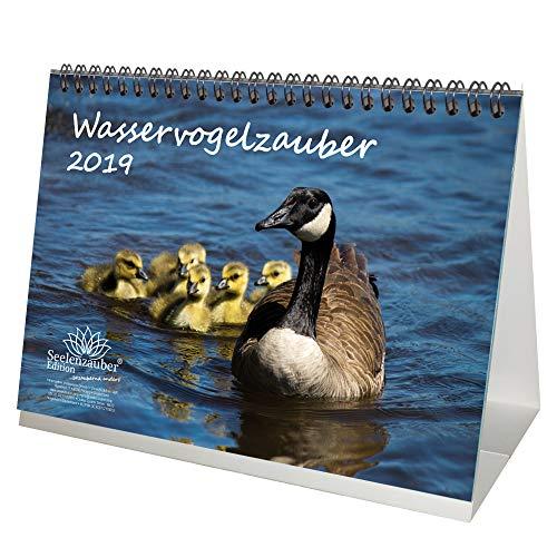 Watervogelmagie · DIN A5 · Premium kalender/tafelkalender 2019 · Ornithologie · veren · vogels · Vogel · Watervogel · Vliegen · Natuur · dieren · Edition Zelmagie