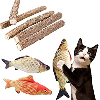 FineInno Matatabi Set Mâcher Chat Catnip Kit Cat Jouets à l'herbe à Ball Bio Bois Stick Cataire Poisson MâChonner Silvervine Menthe Naturel Chat Jouet Dentaire Mâchonner Nettoyage