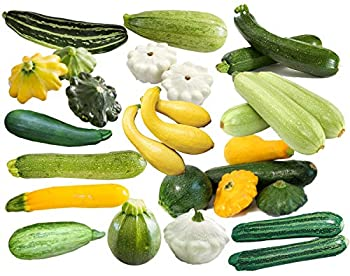 This is a Mix!!! 50+ Zucchini and Squash Mix Seeds 12 Varieties Non-GMO Delicious Grown in USA Rare Super Profilic