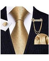 Barry.Wang Cool Ties Gold Handkerchief Cufflink Brooch Necktie Set Gifts for Men