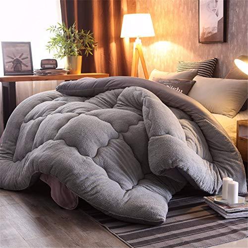 WanJiaMen'Shop Cálido edredón de Lana de Invierno Camelhair/edredón/Cobertor de Cordero Relleno con TelaKing Queen Doble, 200 x 230 cm 3.5 kg
