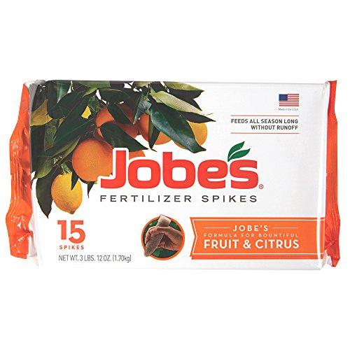 Jobe's 100046754 1612 Fertilizer Spike