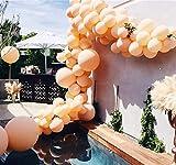 Beaumode DIY Blush Balloon Garland Kit for...