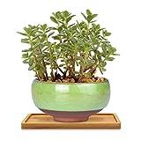 Platillo para plantas, mini bandeja rectangular de bambú, plato de drenaje para...