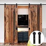 LWZH 8FT/244cm Kit de Quincaillerie pour Porte de Grange Coulissante pour Double Porte Noir I-Forme