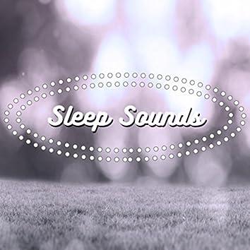 Sleep Sounds (Rain)