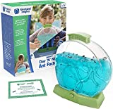 Best Ant Farms - Educational Insights GeoSafari Day 'N' Night Ant Factory: Review