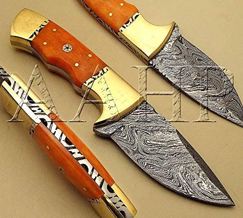 AAHP - quality Cash special price assurance 10 8 Inches Skinner Knife with 3.75 ma inch blade approx