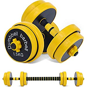 Nice C Adjustable Dumbbell Barbell Weight Pair, Iron Weight Plate, Free Weights 2-in-1 Set, Non-Slip Neoprene Hand, All-Purpose, Home, Gym, Office