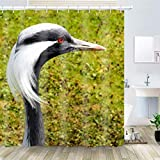 OiArt Shower Curtain, Polyester Fabric Waterproof Hooks Included-72x72 inches- Acorns Crane Bird Head Bill Plumage Neck Eyes