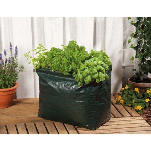 Lifetime Garden 45562 Housse pour la pousse de plantes