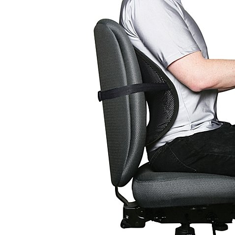 Kiss My Back! Ergonomic Mesh Back Support   Features Adjustable Buckle and Nylon straps that Easily Fits Car Seats, Office, and Kitchen Chairs (1)