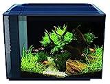 Fluval Aquarium 60L Spec Freshwater Fish Tank
