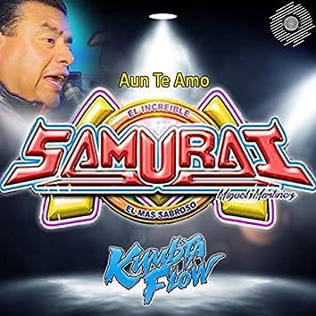 Aun Te Amo (feat. Sonido Samurai)