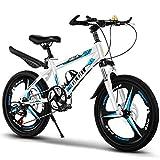 FUFU Bicicleta para niños de 20 Pulgadas, Adecuado para niñas y niños de 9 a 14 años, con Freno de Mano, Rojo, Azul. (Color : Blue)