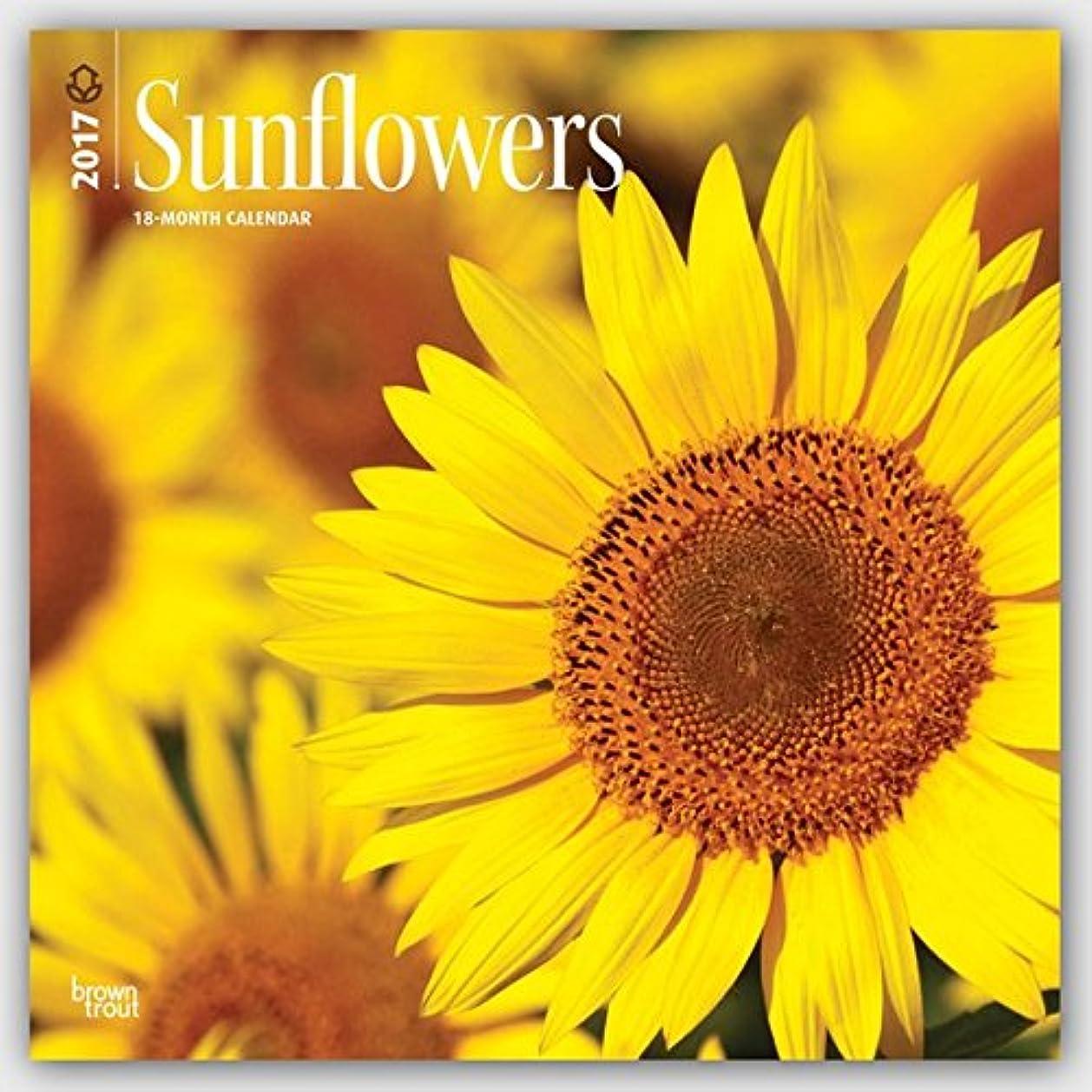 オッズ高さシャープSunflowers 2017 Calendar (Square Wall)