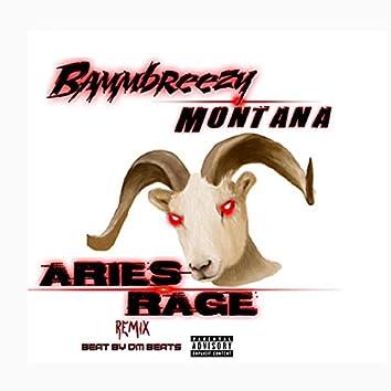 Aries Rage (Remix)