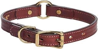 طوق كلاب صيد ME13414 من ميندوتا برودكتس، 2 سم × 35.5 سم، كستنائي