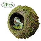 "kathson Reptile Moss Cave Hide for Humidity, 6"" Mossy Hideout for Turtle Crested Gecko Spider Lizard Frog Chameleon (2 Pack)"