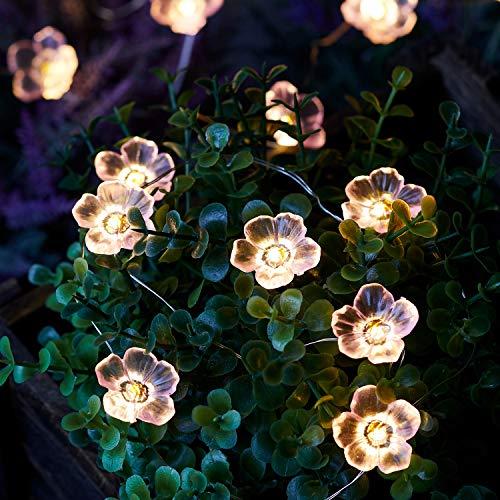 Lights4fun Cadena Luminosa Solar de 20 Flores Rosadas con LED Blancos Cálidos para Exteriores