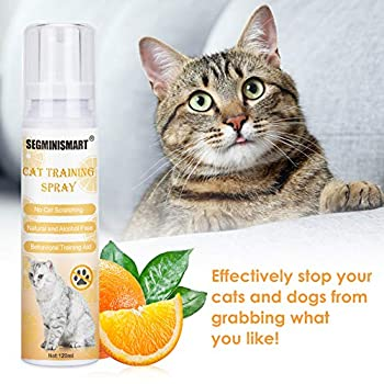 Spray Anti-Rayures pour Chats,Spray Dissuasif,Spray anti-griffure contre les griffades,Cat Training Spray,Education Propreté pour Chien et Chat Animalerie›Chats›Couchage et mobilier›Griffoirs