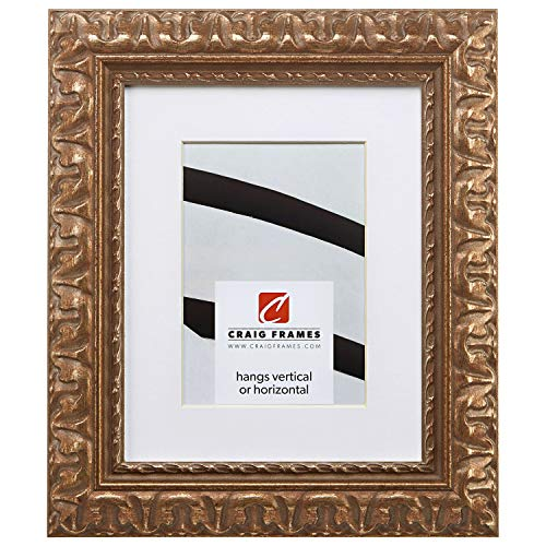 Craig Frames Bravado Ornate, 20 x 24 Inch Antique Bronze Picture Frame Matted to Display a 16 x 20 Inch Photo