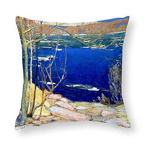 WH-CLA Tom Thomson - Funda de cojín redonda para sofá, 45 x 45 cm, cierre de cremallera, diseño colorido