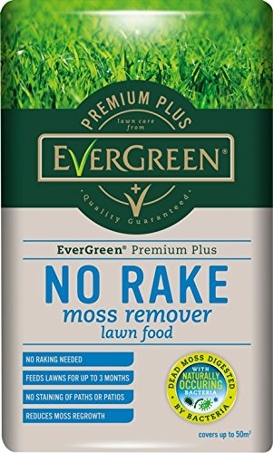 Evergreen No Moss No Rake Moss Remover Lawn Feed 50m2