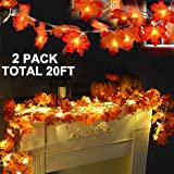 🍁【Perfect for Days and Nights Decorations】2 Pack Total 20ft/40 Led Lights with 40 fallen leaves decoration. Looks like the real fallen leaves, Perfect for both days and nights decorations, In the daytime, it will do its job being a string of maples. ...