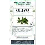 Olivo foglie tisana 1 kg