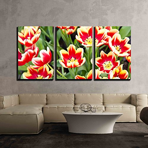 """wall26 - 3 Piece Canvas Wall Art - Tulip - Modern Home Art Stretched and Framed Ready to Hang - 16""""x24""""x3 Panels"""