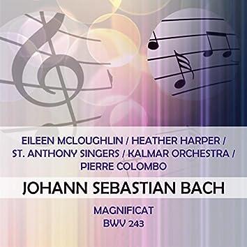 Eileen Mcloughlin / Heather Harper / St. Anthony Singers / Kalmar Orchestra / Pierre Colombo Play: Johann Sebastian Bach: Magnificat, Bwv 243 (Live)