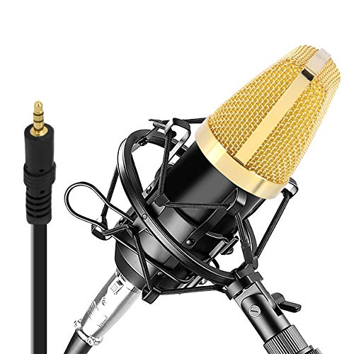 Condenser Microphone Bundle, 3.5 mm Recording Microphone, Shock Mount Plug and Play,Computer Microphone, Podcast, Recording, Studio Vocal, YouTube - Pyle PDMIC71