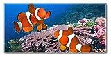 Toalla de playa de, American Heritage Collection, flotante de peces alrededor, 30x 60en