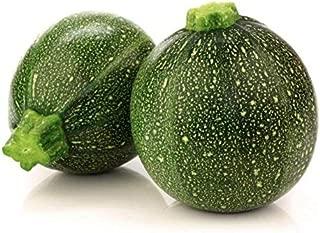 Tatume Squash, 30+ Premium Heirloom Seeds, Top Seller! Delicious! aka: Round Zucchini, Gem Squash & More, Vine Growing Squash Plant, (Isla's Garden Seeds), Non GMO, 90% Germination, Highest Quality!