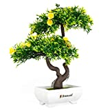 Breewell Mini Artificial Yellow Roses Bonsai Flowers with Pot and Bonsai with Tree