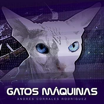 Gatos Máquinas