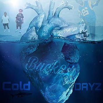 Cold Dayz