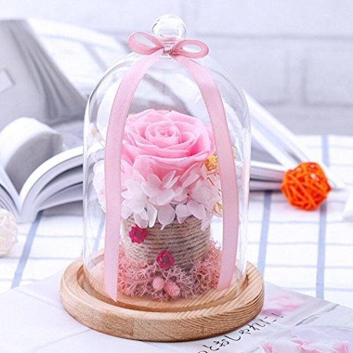 /à Suspendre Boule en Verre Fleur de Vase Pot Terrarium Container f/ête Mariage /à Suspendre Vase en Verre Igemy