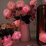 AtneP 20 LED Rose String Lights for Decoration (Warm White)