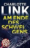 Am Ende des Schweigens: Kriminalroman (BILD am Sonntag Mega-Thriller 2021: PSYCHO!)