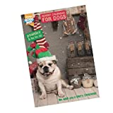 Pawsley Dog Advent Calendar