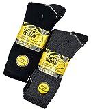 Pack de 12 pares - Calcetines de trabajo para hombre reforzados en talón y punta