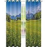 Cortinas térmicas aislantes, foto de los Alpes con prados frescos y flores florecientes nevadas montaña naturaleza hogar, 52 x 72 cortinas opacas para sala de estar de niñas, verde azul