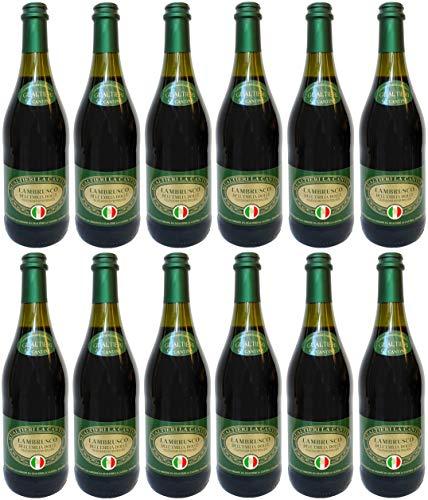 Lambrusco rosso dolce Gualtieri Dell`Emilia IGT mit Korkverschluss (12 X 0,75 L) - Vino Frizzante - Roter Süßer Perlwein 7,5% Vol. aus Italien
