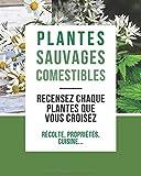 Carnet de Plantes Sauvages Comestibles: Recensez les plantes de que vous croisez | 100 Plantes Comestibles à remplir | Fiches Pratiques à remplir | ... Propriétés.... | 8*10 po 20,32 x 25,4 cm