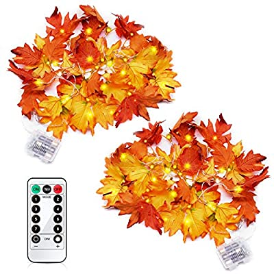 GEJRIO Thanksgiving Decorations Lighted Fall Ga...